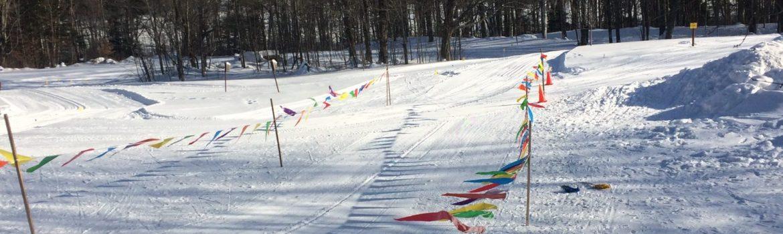 Wild Wings Ski & Yoga